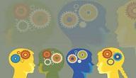 المبادئ الرئيسية لعملية التعلم