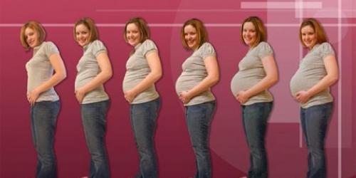 مراحل الحمل بالاسابيع والاشهر