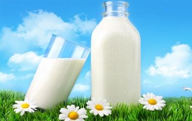 معلومات عن الحليب