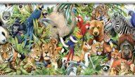 بحث عن تربية الحيوانات