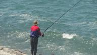 صيد السمك بالسنارة للمبتدئين