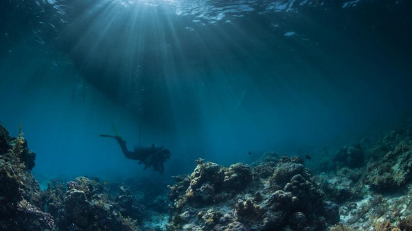 خصائص المحيطات