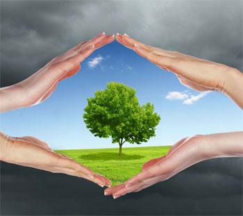 حلول مشاكل البيئة