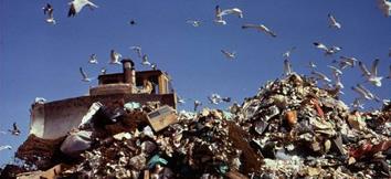 اثار التلوث على الصحة و البيئة و الاقتصاد