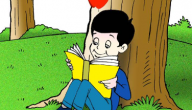 قصص دينية للاطفال عن الصلاة