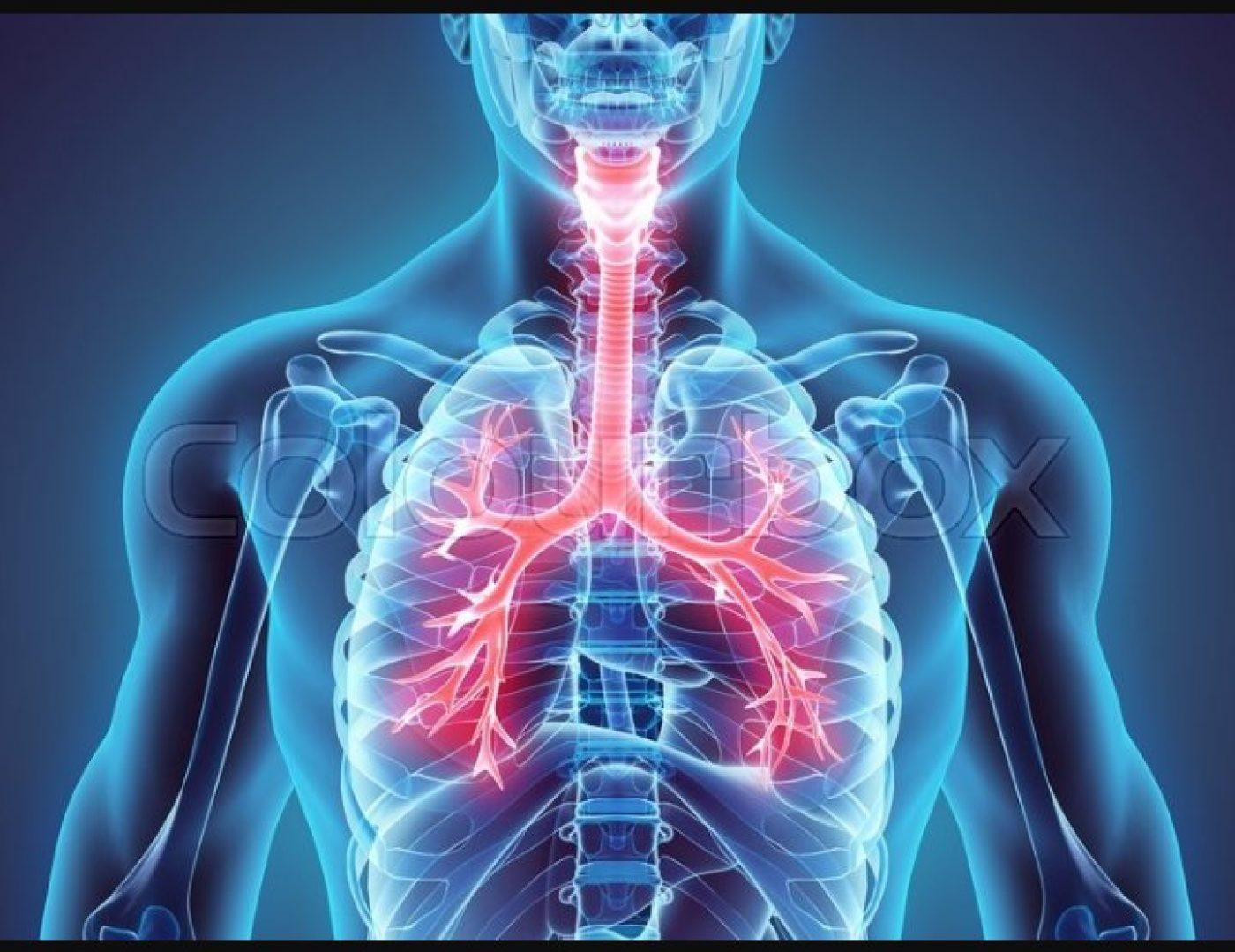 بحث حول امراض الجهاز التنفسي