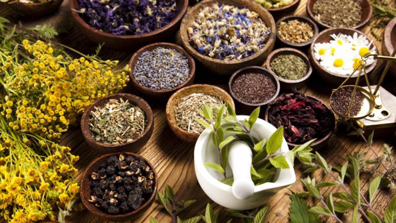 علاج الحساسية بالاعشاب