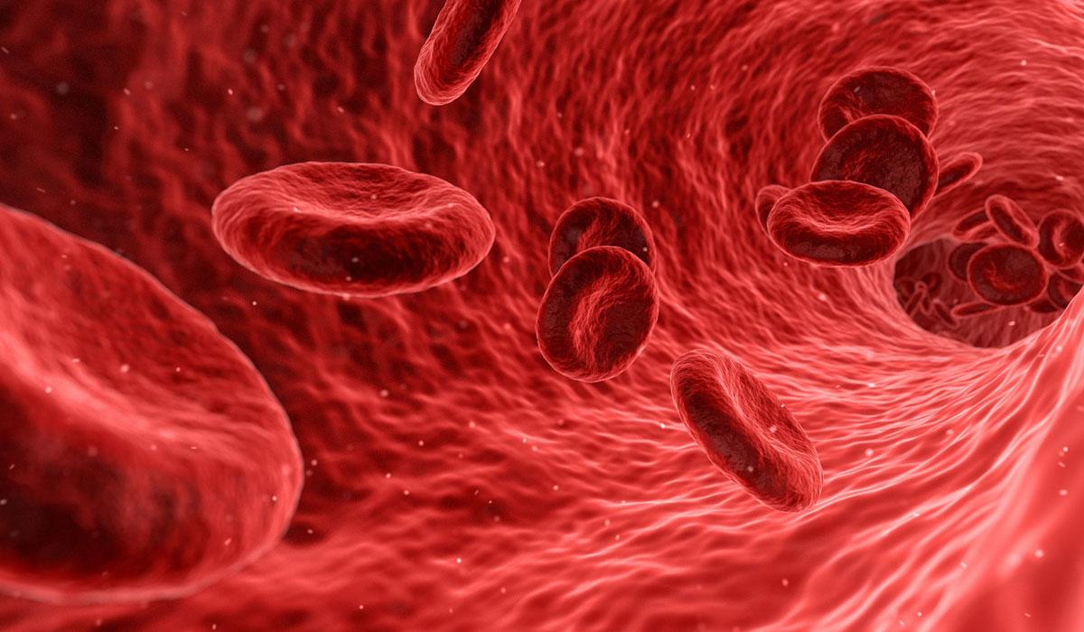 هل حساسية الدم معدية