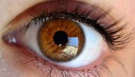 تصوير شبكية العين