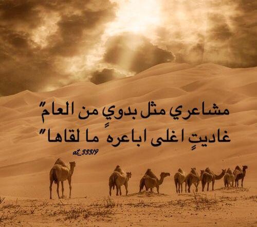 شعر مدح شيوخ العشائر مفهرس