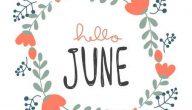 مناسبات شهر يونيو