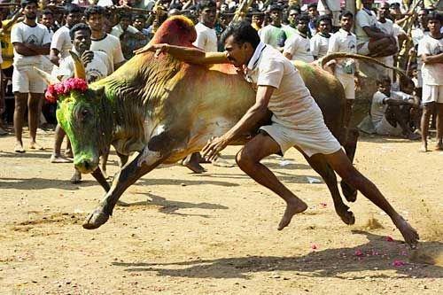 تقاليد عادات  الهند بالصور 13_38_11