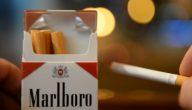 مقال صحفي عن التدخين