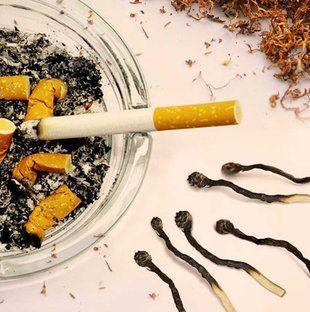 ترك التدخين والحيوان المنوى
