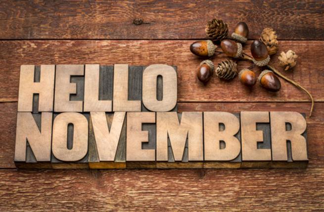 مناسبات شهر نوفمبر