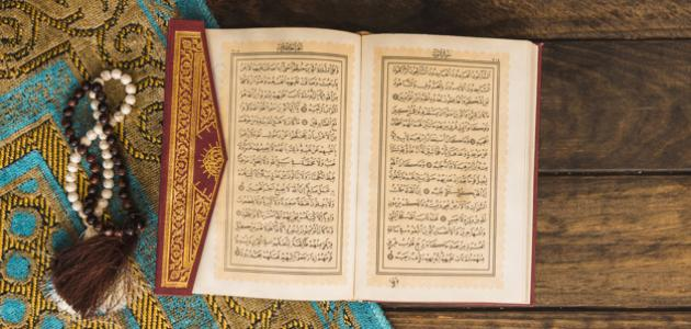 مقدمة عن الأمثال في القرآن مفهرس