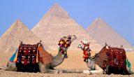 حلول لتنشيط السياحة في مصر