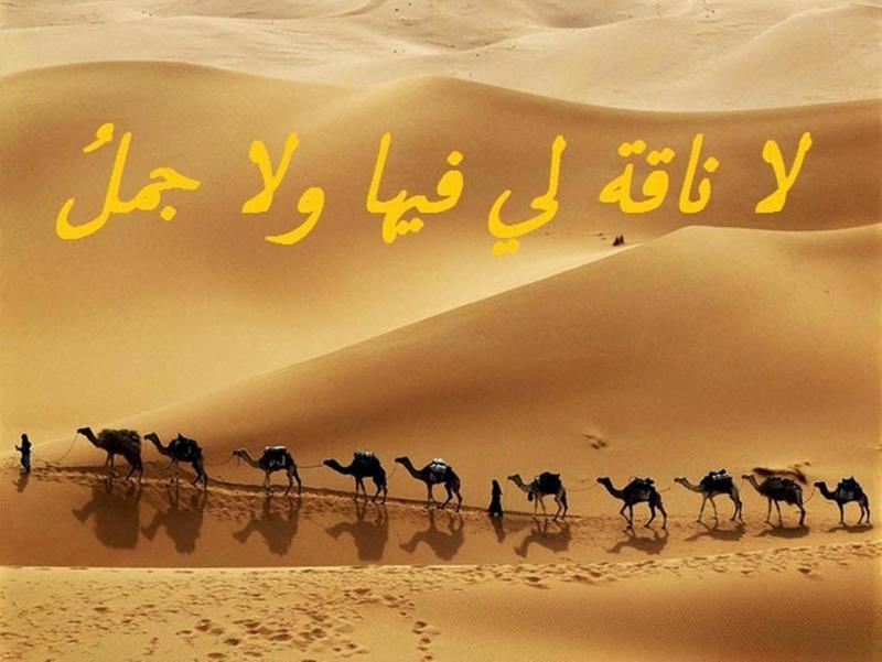 أمثال عربية قديمة وقصتها