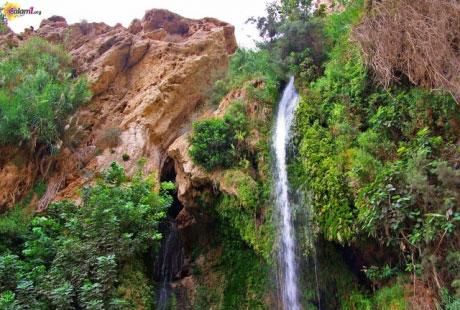 السياحة البيئية وطرق تنميتها