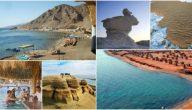 ماهي أنماط السياحة