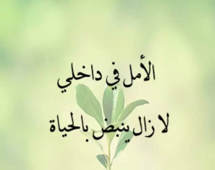 الحياة والامل عبارة جميلة عن الحياة