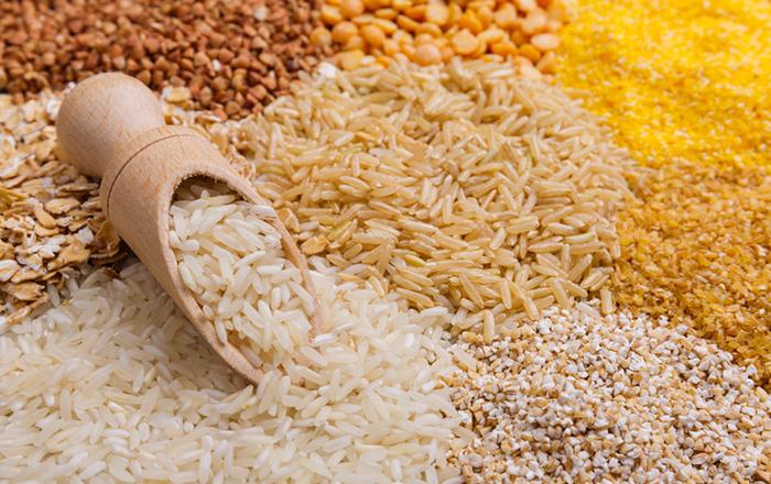 هل الرز المصري يزيد الوزن مفهرس