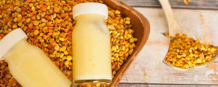 أضرار غذاء ملكات النحل للرجال مفهرس