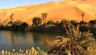 نبذة عن السياحة البيئية في السعودية