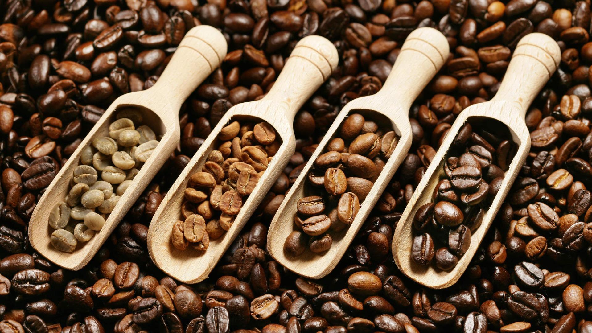 معلومات عن القهوة المختصة