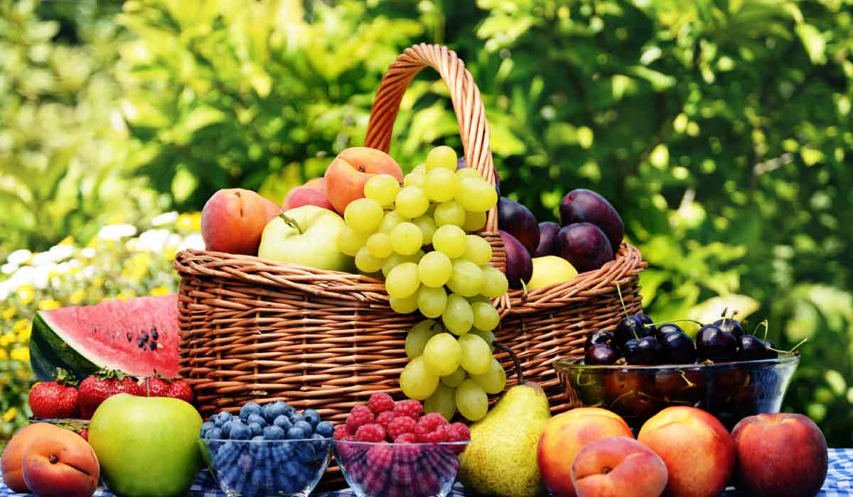 عبارات عن الفواكه
