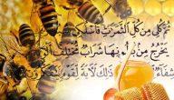 حديث الرسول عن العسل