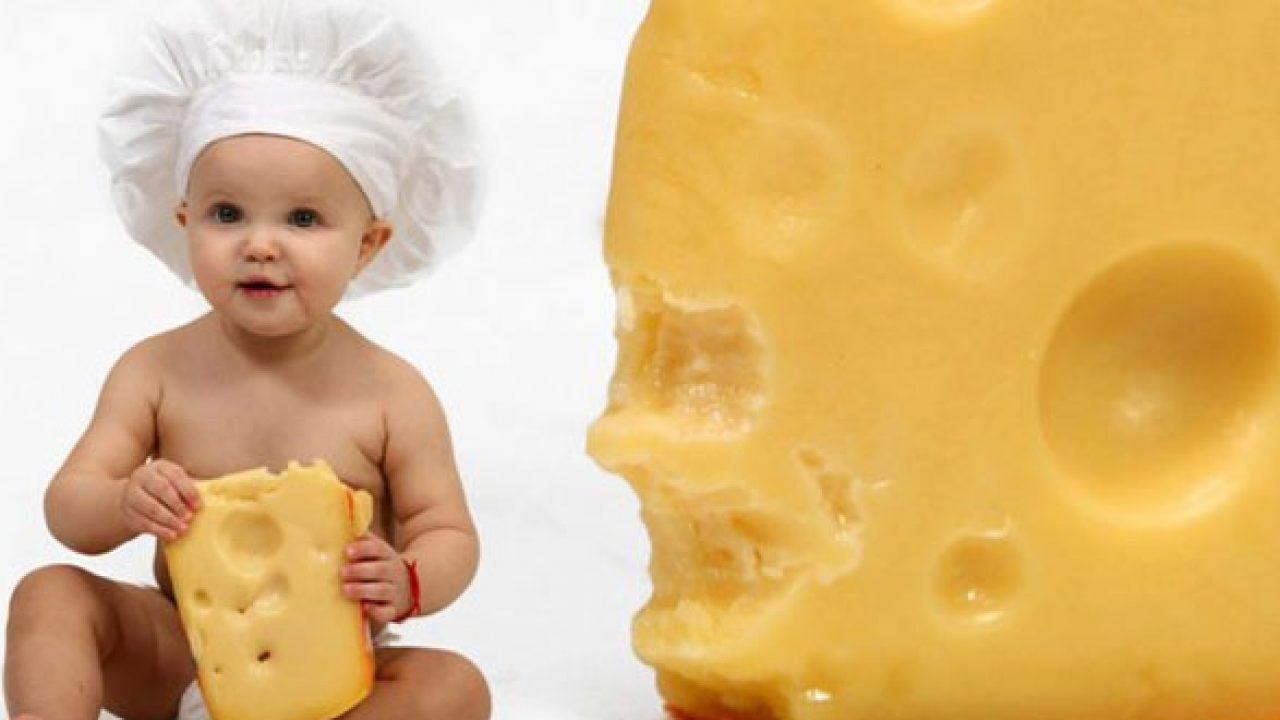 أفضل أنواع الجبن للرضع