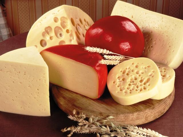 فوائد الجبنة الفلمنك للحامل