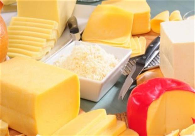 فوائد الجبنة الفلمنك