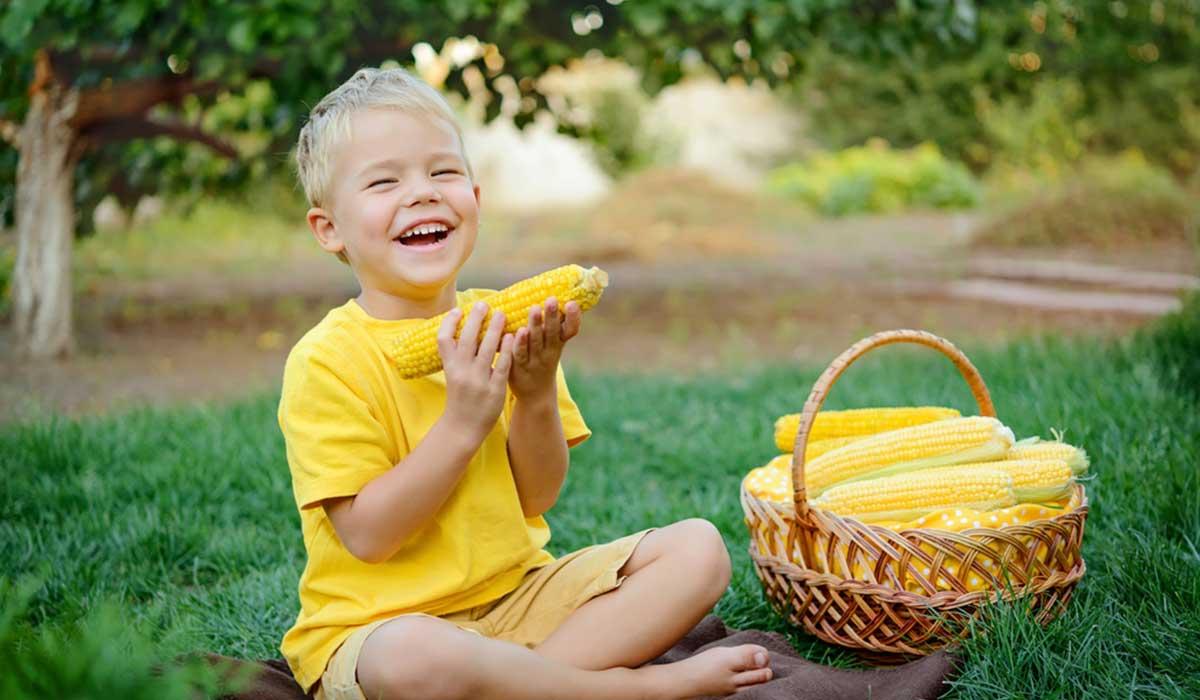 فوائد الذرة الحلوة للأطفال