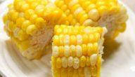 فوائد واضرار الذرة