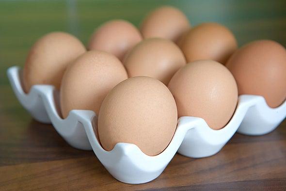 هل البيض من مشتقات الحليب