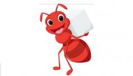 قصة النملة النشيطة