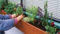 معلومات عن الزراعة المنزلية