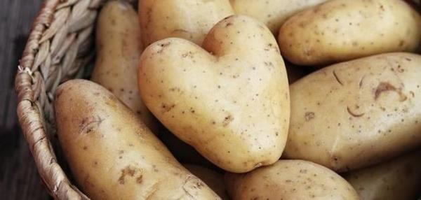 فوائد البطاطس للوجه الدهني