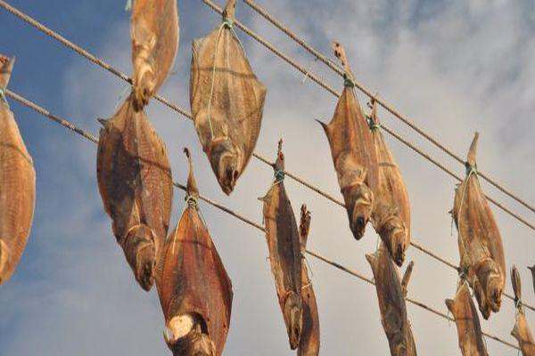 فوائد السمك المجفف