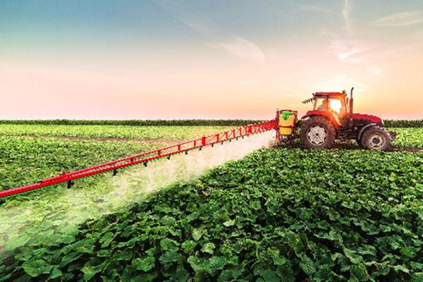 معلومات عامة عن الزراعة