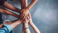 فوائد التعاون في العمل