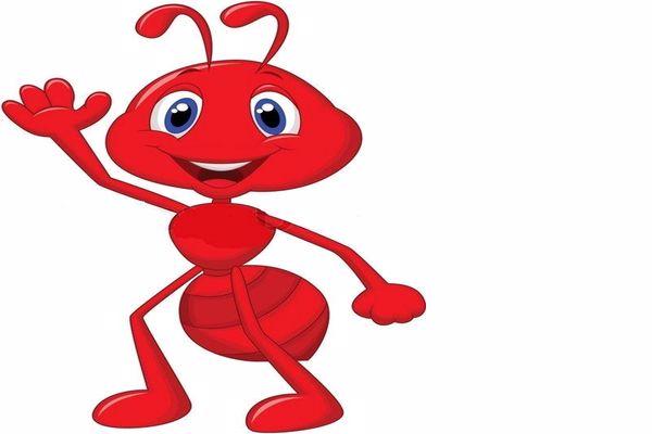 قصة عن النمل
