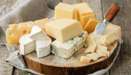أغلى أنواع الجبن