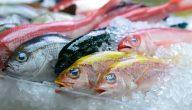 مدة حفظ السمك الطازج في الفريزر
