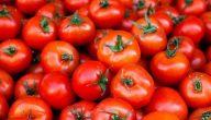 اسماء الطماطم في السعودية