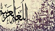 مقال عن أهمية اللغة العربية