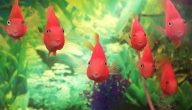 هل تعيش السمكة في الماء المغلي