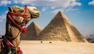 خاتمة بحث عن السياحة